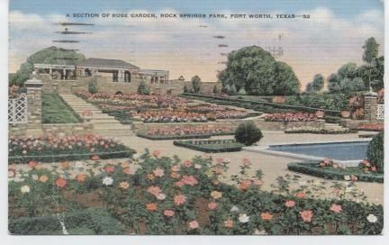A section of Rose garden , Rock Springs Park. Fort Worth